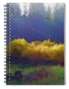 Golden Surprise Spiral Notebook
