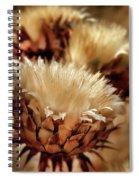 Golden Thistle II Spiral Notebook