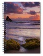 Golden Tides Spiral Notebook
