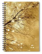 Golden Tones Spiral Notebook
