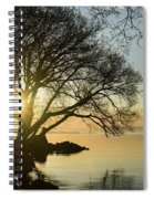 Golden Tranquility - Lacy Tree Silhouettes On The Lake Shore Spiral Notebook