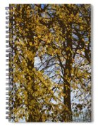 Golden Tree 2 Spiral Notebook