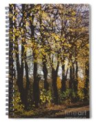 Golden Trees 1 Spiral Notebook