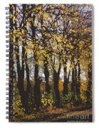 Golden Trees 1 Spiral Notebook