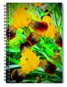 Golden Trio Of Iris Spiral Notebook
