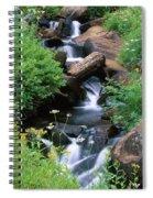 Golden Trout Wilderness Spiral Notebook