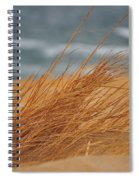 Golden View Spiral Notebook