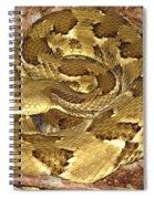 Golden Viper Spiral Notebook