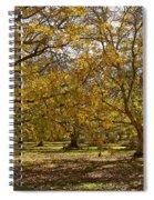 Golden Walnut Orchard II Spiral Notebook