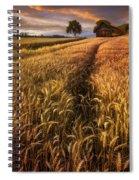 Golden Waves Of Grain Spiral Notebook