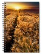 Golden Wheat Dreamscape Spiral Notebook