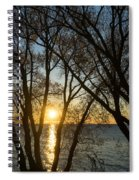 Golden Willow Sunrise - Greeting A Bright Day On The Lake Spiral Notebook