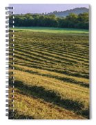 Golden Windrows Spiral Notebook