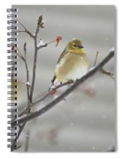 Golden With Snow Spiral Notebook
