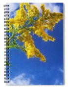 Goldenrod In The Sky Spiral Notebook