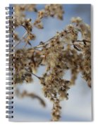 Goldenrod In The Snow Spiral Notebook