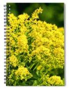 Goldenrod Spiral Notebook