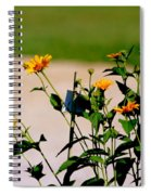 Goldfinch And Yellow Flowers Spiral Notebook