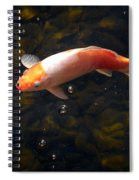 Goldfish Spiral Notebook