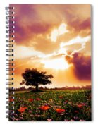 Golds At Sunset After The Rain Spiral Notebook