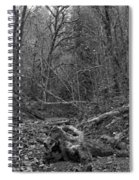 Goldstream Provincial Park Black And White Spiral Notebook
