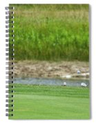 Golfing Chipping The Ball In Flight Spiral Notebook