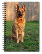 Good Boy Spiral Notebook