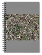 Good Hearts Are Everywhere - Grounded Spiral Notebook