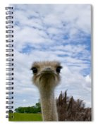 Good Morning From Tennessee Spiral Notebook