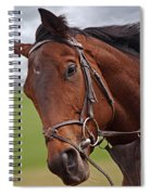 Good Morning - Racehorse On The Gallops Spiral Notebook