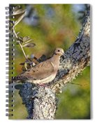 Good Mourning Dove By H H Photography Of Florida Spiral Notebook
