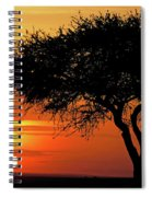 Good Night, Maasai Mara Spiral Notebook