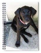Good Puppy Spiral Notebook