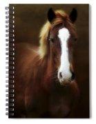 Good Stead Spiral Notebook