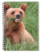 Good Stuff Spiral Notebook