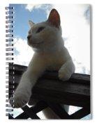 Goodbye Blue Sky Spiral Notebook