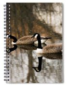 Goose Reflection Spiral Notebook