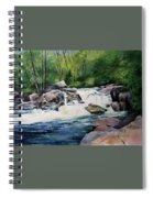 Gooseberry River Spiral Notebook