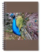Gorgeous George Spiral Notebook