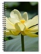 Gorgeous Lotus Flower Spiral Notebook