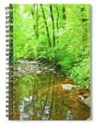 Georgia Stream In Summer Spiral Notebook