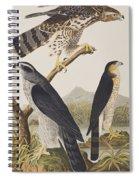 Goshawk And Stanley Hawk Spiral Notebook