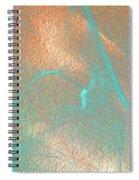 Gossamer Abstract Spiral Notebook