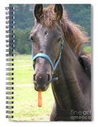 Got Carrots Spiral Notebook