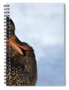 Got Fleas Spiral Notebook