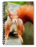 Got Nuts? Spiral Notebook
