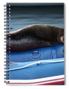 Got Salmon Spiral Notebook