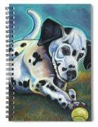 Gotballs4pets? Dalmatian Spiral Notebook