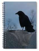 Gothic Blue Sky And Crow Spiral Notebook