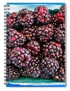 Gotta Have These Spiral Notebook